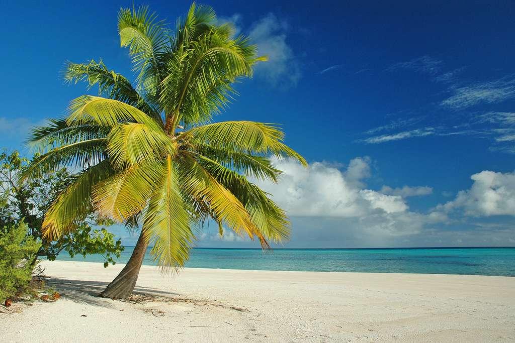 Plage dans l'atoll de Makemo, une idée du paradis... © Antoine