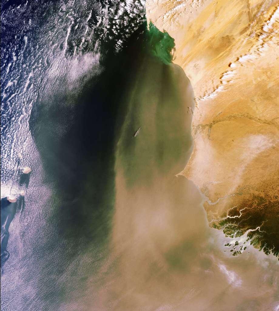 Sur Terre, une tempête du désert vue de l'espace
