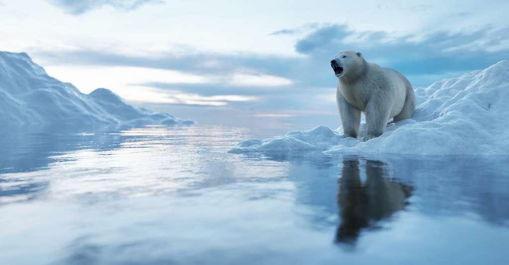 L'oscillation atlantique multidécennale (OAM) peut amplifier ou atténuer le réchauffement climatique anthropique. «Les eaux de surface de l'Atlantique ont été constamment chaudes depuis 1995 environ. Nous ne savons pas si les conditions vont bientôt passer à une phase plus froide, ce qui soulagerait le réchauffement accéléré de l'Arctique. Mais si le réchauffement de l'Atlantique se poursuit, des conditions atmosphériques favorisant une fonte plus sévère des calottes glaciaires sont à prévoir au cours des prochaines décennies», prévient Raymond Bradley, chercheur, dans un communiqué de l'université du Massachusetts (États-Unis). © Photocreo Bednarek, Adobe Stock