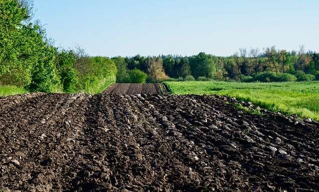 Terres arables. © Fritz the cat, Pixabay, DP