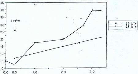 Figure 2 : Augmentation de la proportion de cellules mortes (en % sur les ordonnées) dans une culture de lymphocytes T humains, en présence de concentration croissante de peptides d'élastine (échelle logarithmique en abscisses, en lig/ml). Deux préparations de k-élastine ont été utilisées, de plus faible (10 kD moyen) et de plus haut (75 kD moyen) poids moléculaire (33).
