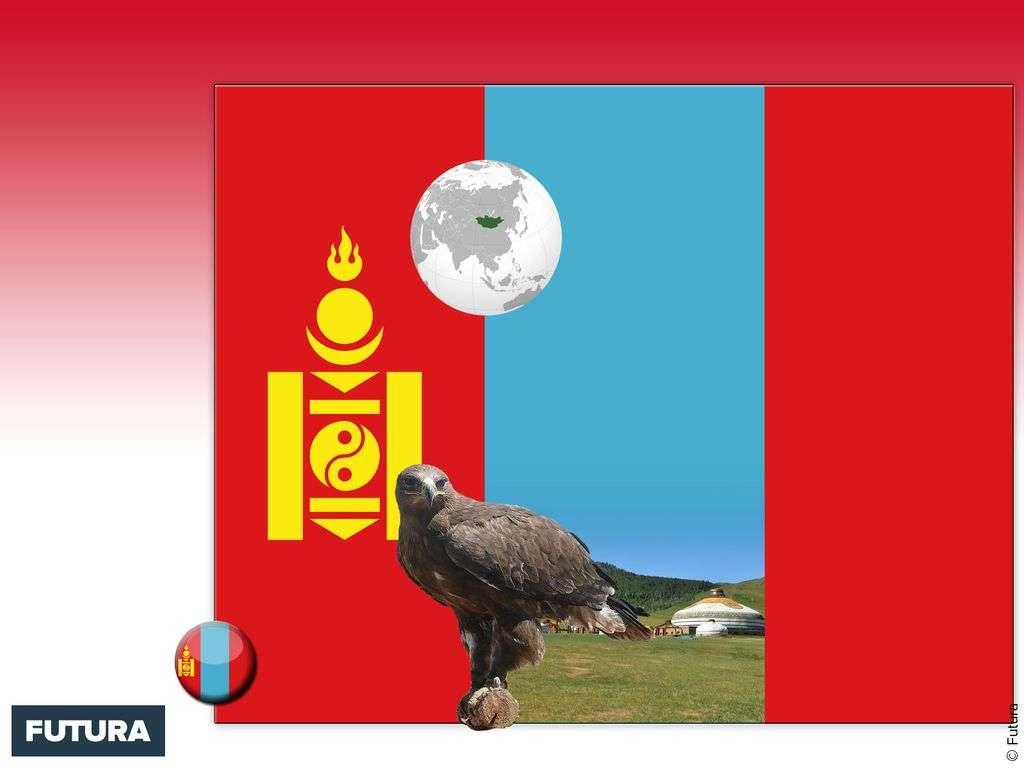 Drapeau : Mongolie