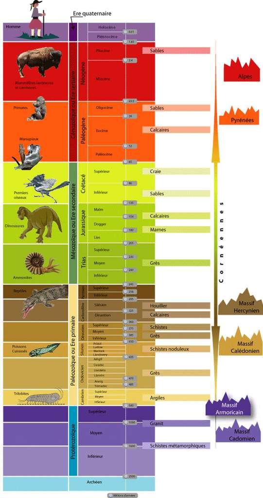 Cliquez pour agrandir : échelle des temps géologiques