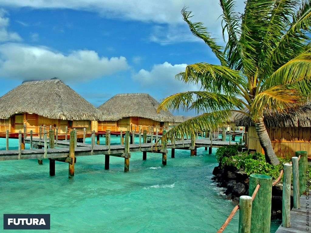 Bora-Bora, lagon turquoise, pieds dans l'eau