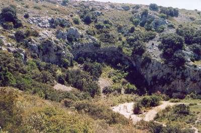 Paysage de garrigue dans le Languedoc. © Hugo Soria, Licence de documentation libre GNU, version 1.2
