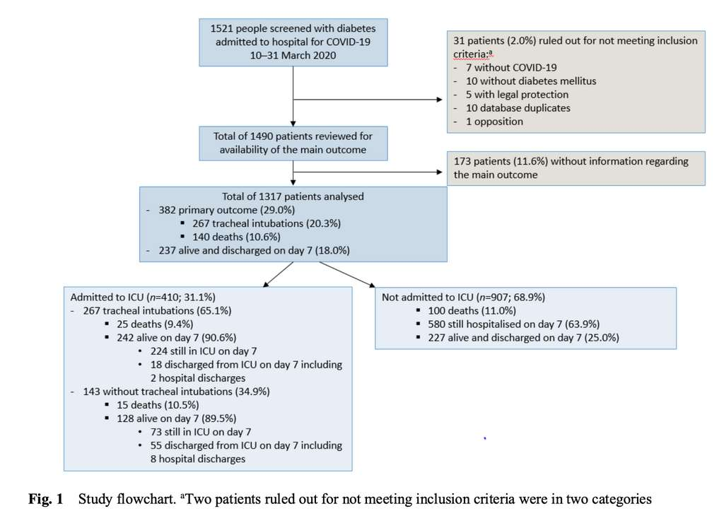 Organigramme résumé de l'étude Coronado. © Bernard Cariou et al. Diabetologia