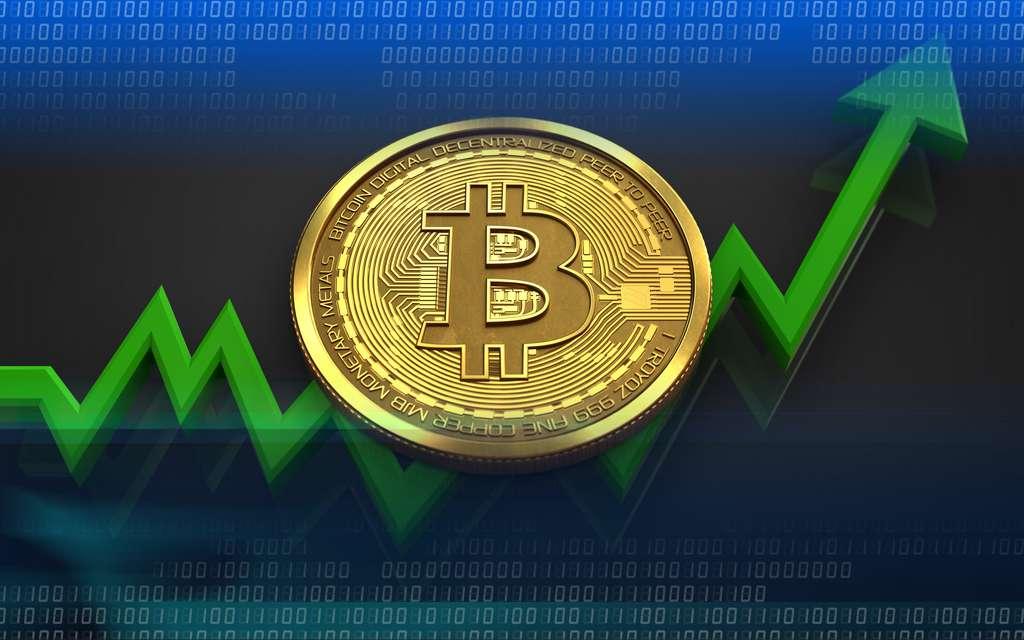 Les plus-values sur les cryptomonnaies sont désormais à déclarer. © Maxim_Kazmin, Adobe Stock