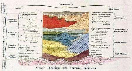 Cliquez pour agrandir Coupe de Prévost - Cliché Bibliothèque centrale du Museum.