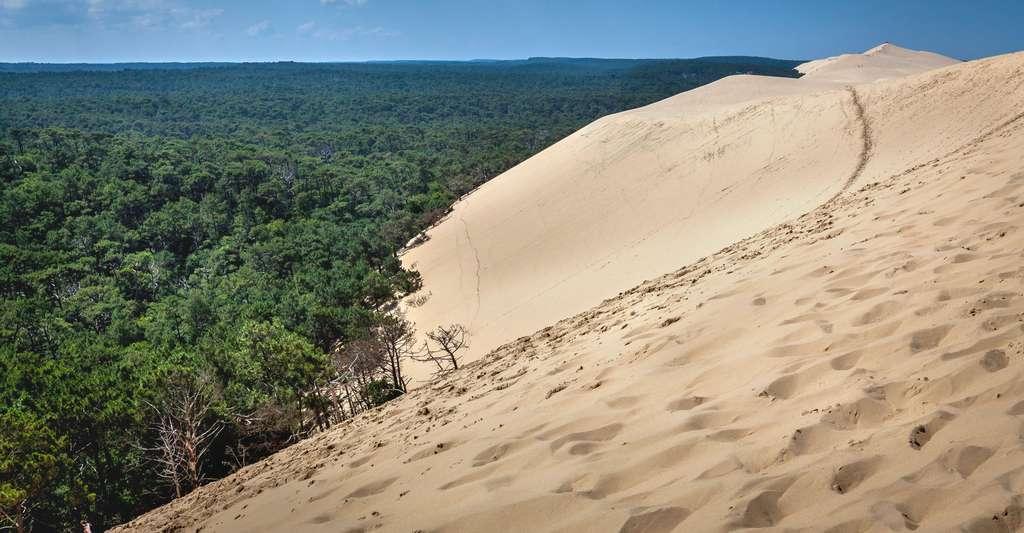 Dune du Pyla. © Gil7416, Fotolia