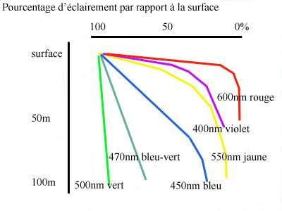 Pourcentage d'éclairement (différentes longueurs d'onde) dans un milieu aquatique, de 100 à 0 %, de la surface à -100 m. © DR