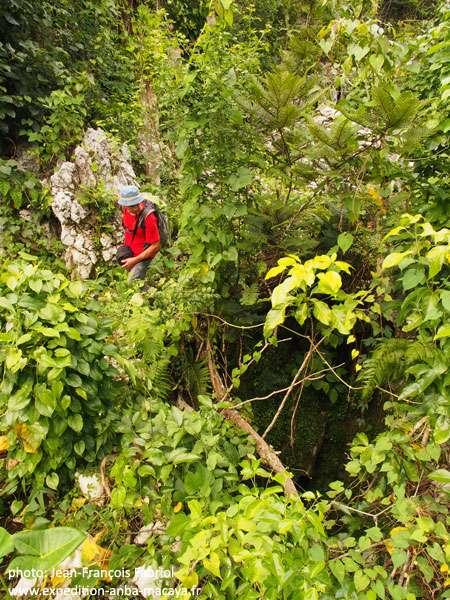 Les entrées des gouffres se cachent dans la jungle. Celui-là était inconnu. © Jean-François Fabriol