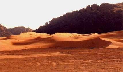 """Mauritanie. Débouché de la vallée du Gorgol Blanc. Le sable allochtone qui migre dans la vallée se mélange au matériel fluviatile autchtone. Ce sable """"blanc"""" alimente la Dhrayya Malichigdâne (faisceau de sifs géants de 40 km de long)"""