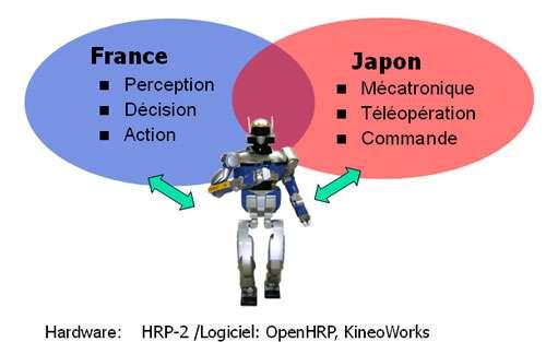 Le JRL est un ensemble de deux sites, l'un situé au Japon, l'autre en France. © DR