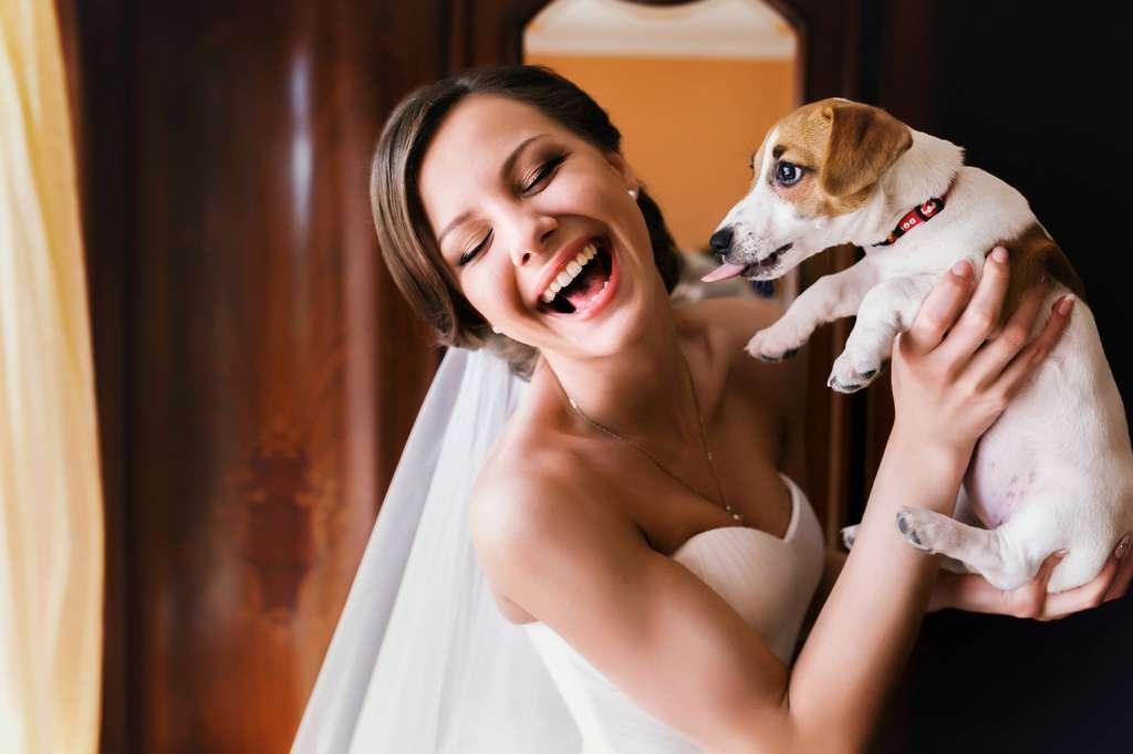 Lécher le nez de leur maître est une façon pour le chien de quémander son repas. © IVASHstudio, Fotolia