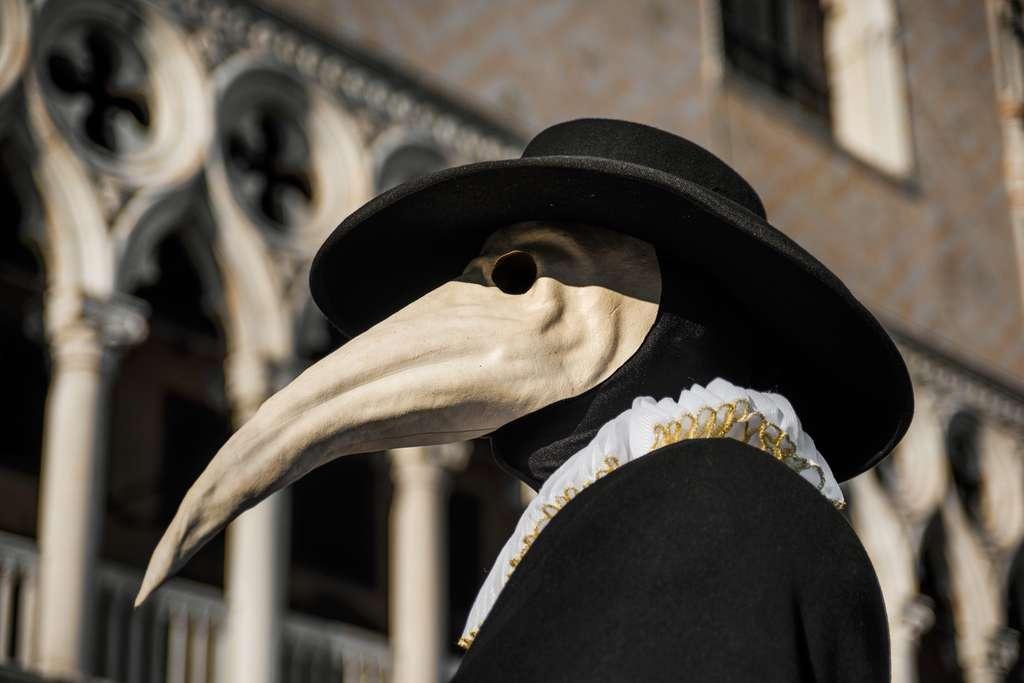 Le célèbre masque du Capitan. © crisfotolux, fotolia