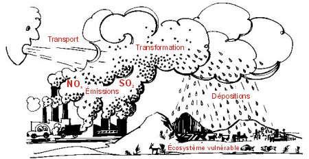 Pluies acides processus de formation