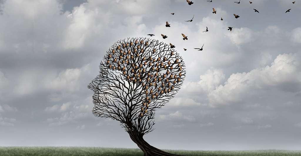 Les troubles de la mémoire comme l'amnésie, comment les guérir ? © Lightspring, Shutterstock