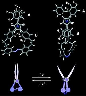 Ouverture et fermeture de la paire de ciseaux moléculaire sous l'action de la lumière (Crédit : Takuzo Aida).