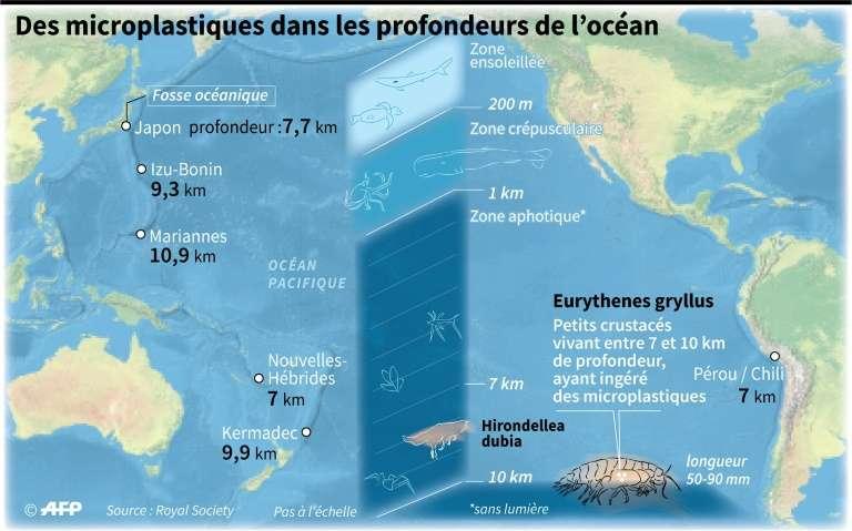 Des microplastiques dans les profondeurs de l'océan. © Jonathan Walter, AFP