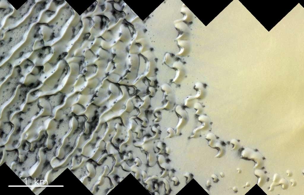 Image réalisée le 25 mai 2019 par ExoMars Trace Gas Orbiter (TGO). Elle révèle, entre autres, des barkhanes, des dunes en forme de croissant qui donnent aux astronomes des indications quant au rôle des vents secondaires dans la formation de tels reliefs. © ESA/Roscosmos/CaSSIS, CC BY-SA 3.0 IGO