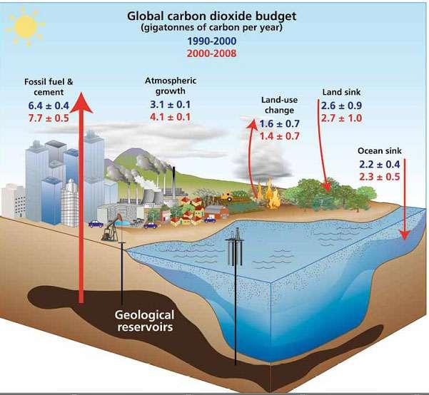 Figure 2. Bilan du CO2 anthropique pour 1990-2000 (bleu) et 2000-2008 (rouge) (GtC par an). © Le Queré, 2009, Global Change 2009
