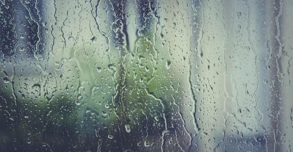 Dans une atmosphère humide de CO2 pur, le matériau développé par les chercheurs de l'université de Swansea (Royaume-Uni) s'est montré capable d'absorber 23,5 % du CO2. Un chiffre impressionnant. © markusspiske, Pixabay License