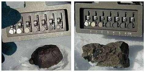 Chondrite et achondrite découvertes le 27 janvier. Crédit NASA/Carnegie