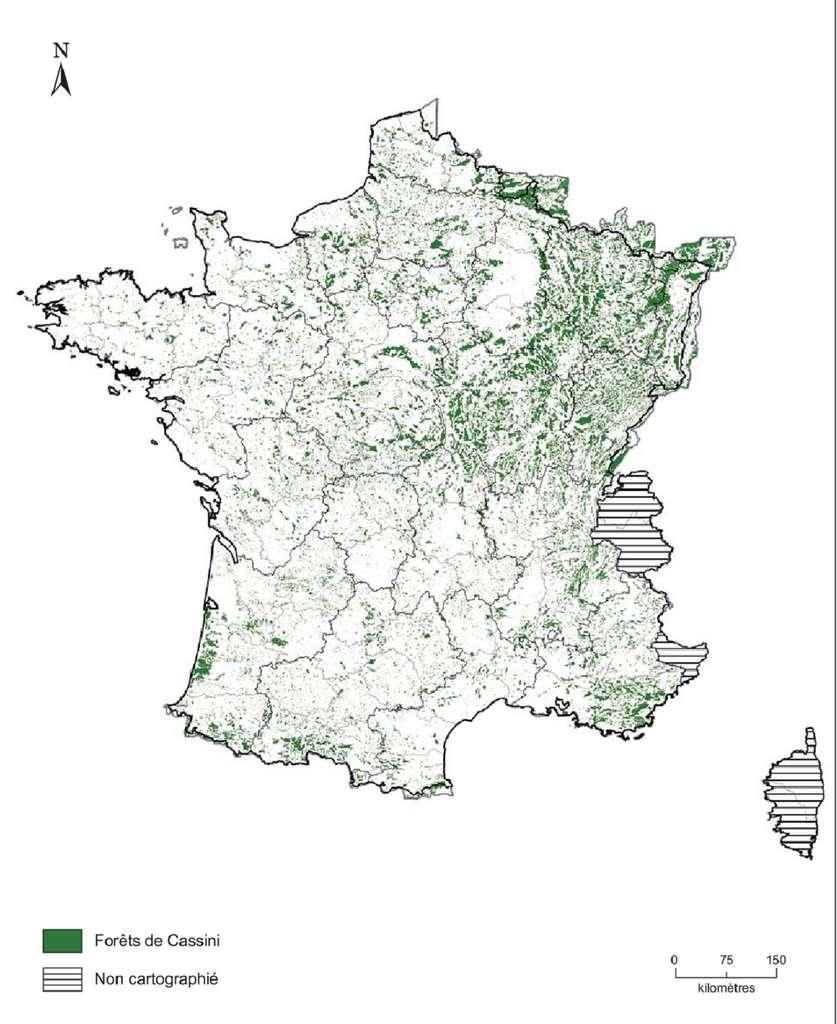 Représentation des forêts répertoriées sur les cartes de Cassini vers 1770 (densité forestière importante sur le quart nord-est du pays). © WWF, INRAP