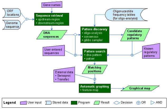 Figure 2. Schéma de fonctionnement de RSA tools (http://ucmb.ulb.ac.be/bioinformatics/rsatools)