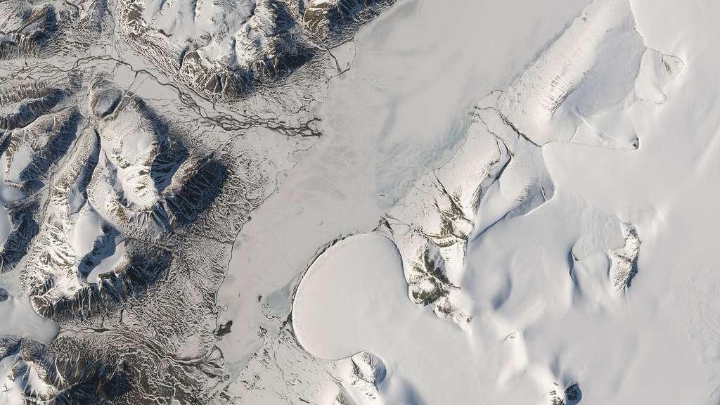 Un étonnant glacier « pied d'éléphant »