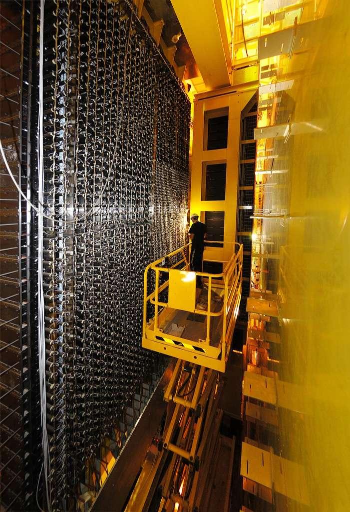 Les photomultiplicateurs de LHCb