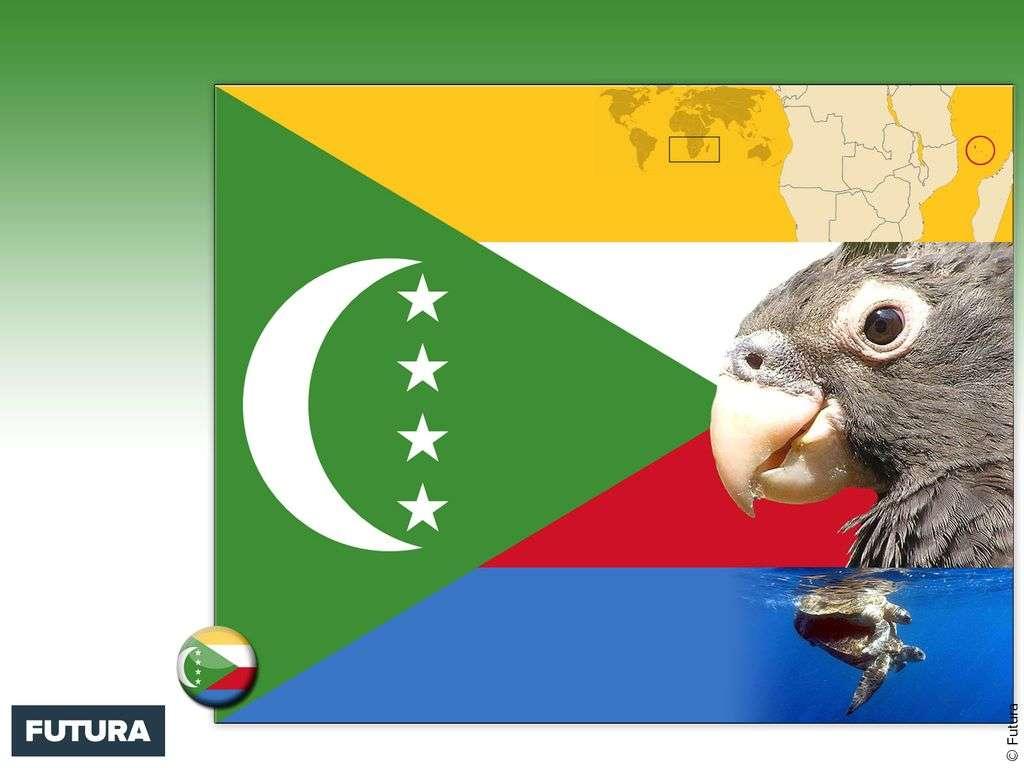 Drapeau : Comores