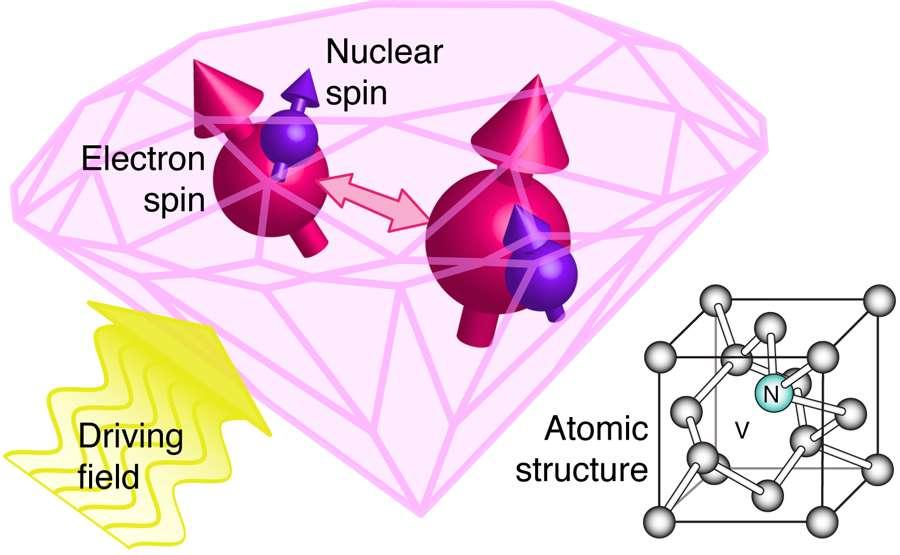À droite, on voit la structure cristalline du diamant avec un atome d'azote (N) à la place d'un atome de carbone et une lacune (V) indiquant l'absence d'un atome de carbone. C'est un centre coloré NV. Sur la gauche, on a représenté deux centres NV dont les moments cinétiques (electron spin, nuclear spin) peuvent être influencés par un champ électromagnétique variable dans le temps (driving field). On peut se servir de ces centres pour travailler sur l'information quantique, et des chercheurs y ont observé l'effet Zénon. © APS, S. Benjamin, J. Smith