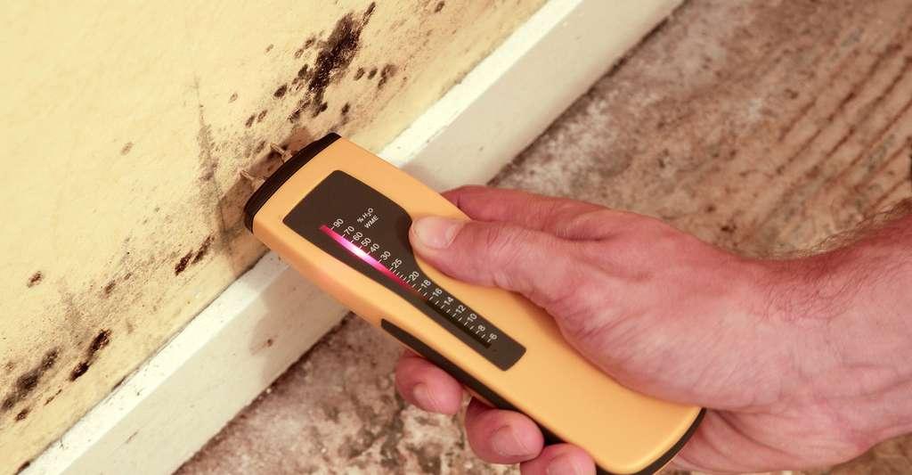 Comment lutter contre les remontées capillaires et éviter l'humidité de la maison ? Ici, test du taux d'humidité d'une cloison. © Fanchy, Fotolia