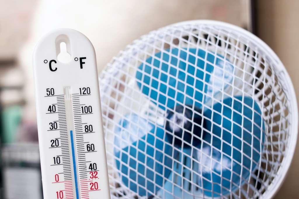 Le ventilateur électrique est suffisant lorsque la température ne dépasse pas les 39 °C. © Vera Aksionava, Adobe Stock
