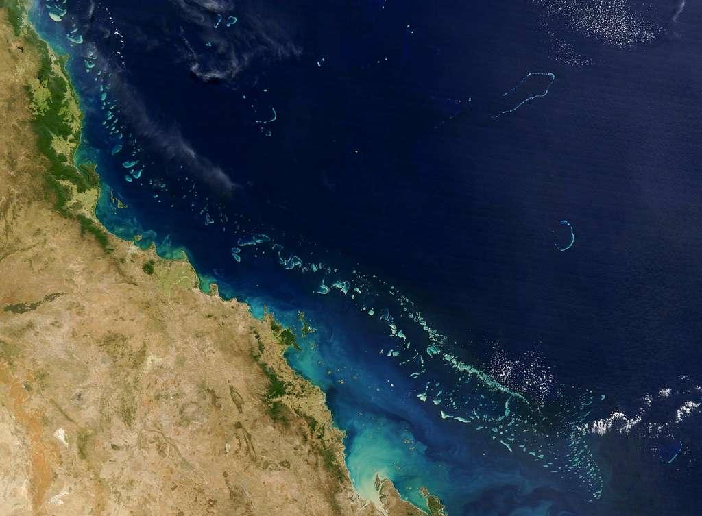 La Grande Barrière de corail s'allonge sur plus de deux mille kilomètres. Cet ensemble de récifs coralliens est un lieu de biodiversité unique au monde. © HO, Nasa, AFP