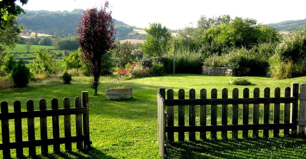 L'entretien est très important pour obtenir une belle pelouse. © Guadalupe Cervilla, Wikimedia Commons, CC by-sa 2.0
