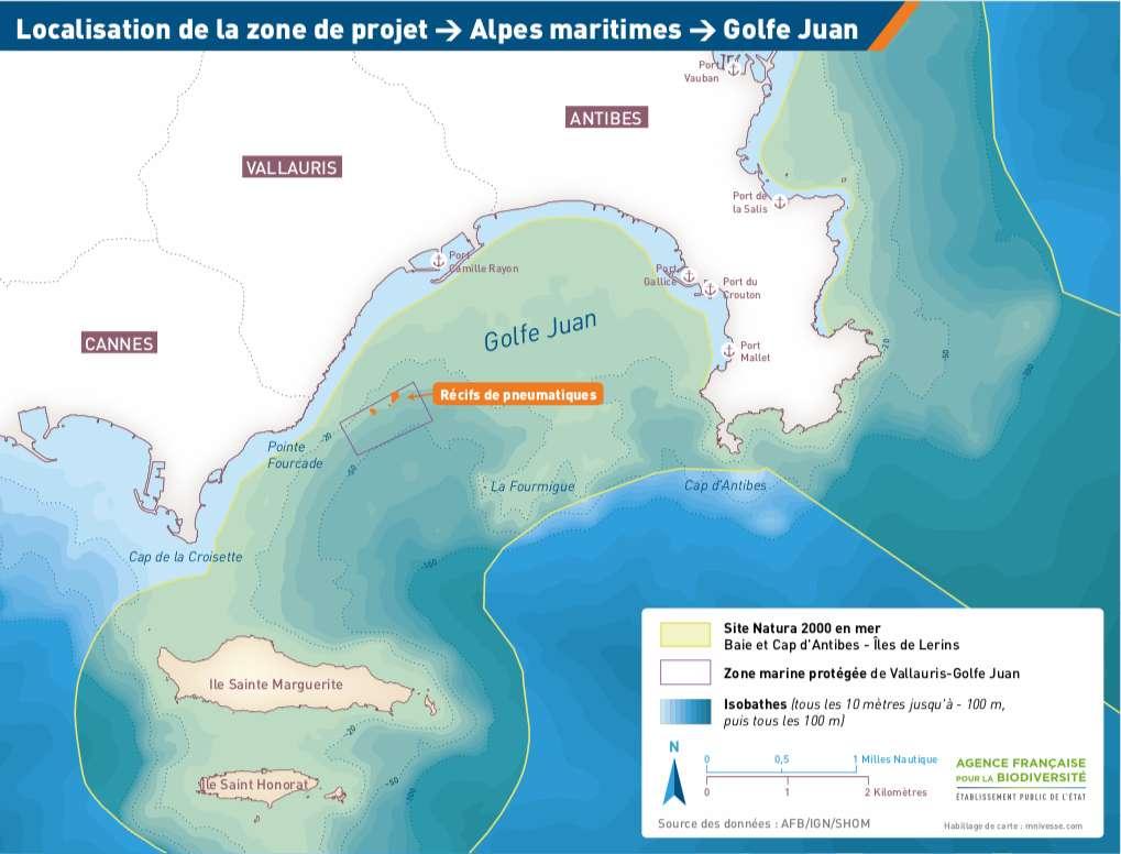 25.000 pneus avaient été immergés dans les années 1980 dans la zone Natura 2000 pour servir de récif artificiel. © Agence française pour la biodiversité