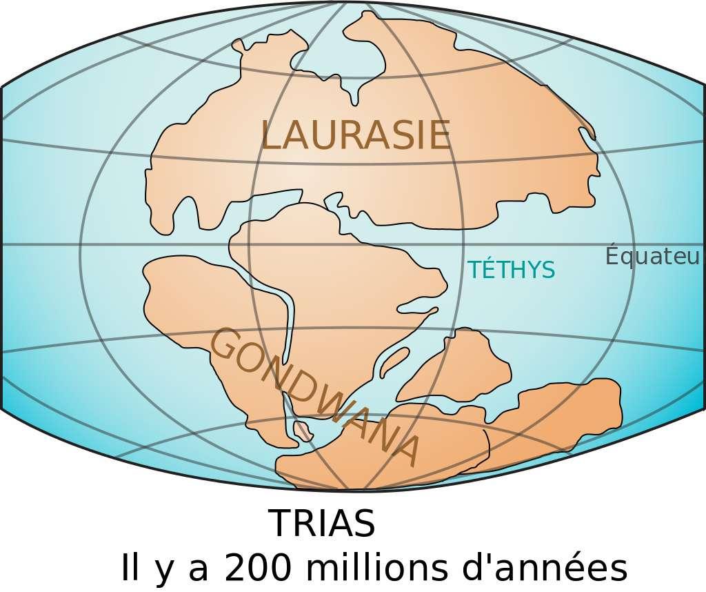 Supercontinent Gondwana © Benoit Rochon, Wikimedia Commons, CC by-sa 3.0
