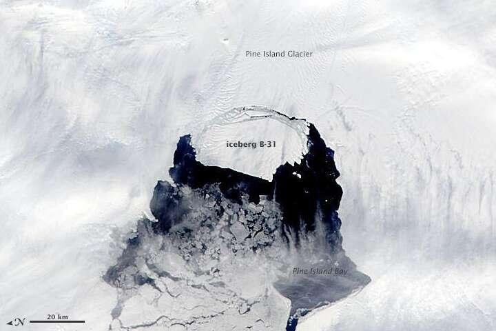 Le 10 novembre, la fracture s'est élargie, comme en témoigne l'image du satellite Aqua (Nasa). L'iceberg B-31 est baptisé. © Nasa