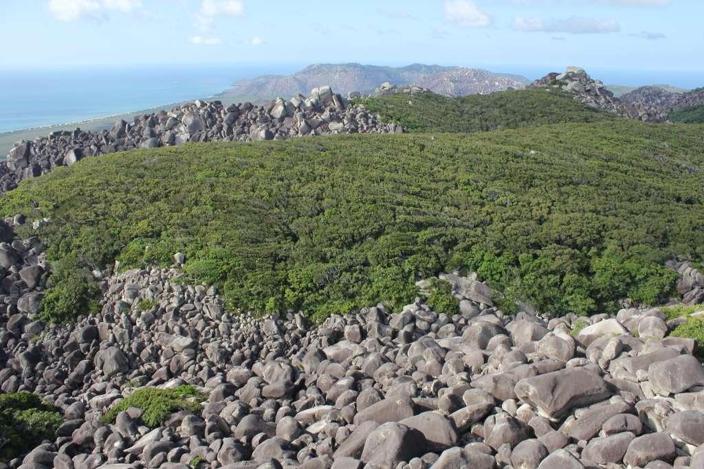 Les blocs de granite composant la chaîne de montagnes Cape Melville ont des tailles comparables à des voitures ou à des maisons. Ils se sont formés voici 250 millions d'années. © Conrad Hoskin