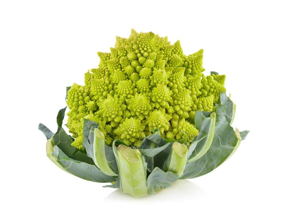 D'origine italienne, le chou romanesco est aussi appelé « brocoli à pomme » © yodaswaj, Adobe Stock