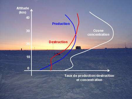 Figure 7 : Production, destruction et concentration de l'ozone en fonction de l'altitude selon le modèle de Chapman (© J. Savarino)