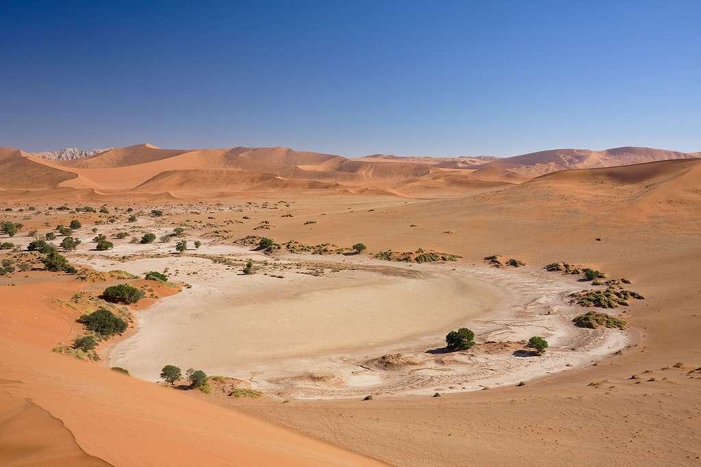 Le désert de sel de Sossusvlei, en Namibie. Il est rempli environ une fois par décennie par la rivière Tsauchab. © Ikiwaner, Wikimedia Commons, GNU 1.2