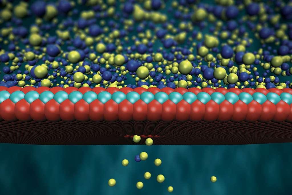 Les chercheurs de l'EPFL ont développé une membrane sélective en disulfure de molybdène de seulement trois atomes d'épaisseur qui permet de tirer un maximum de profit de l'énergie osmotique. © Steven Duensing, National Center for Supercomputing Applications, University of Illinois, Urbana-Champaign