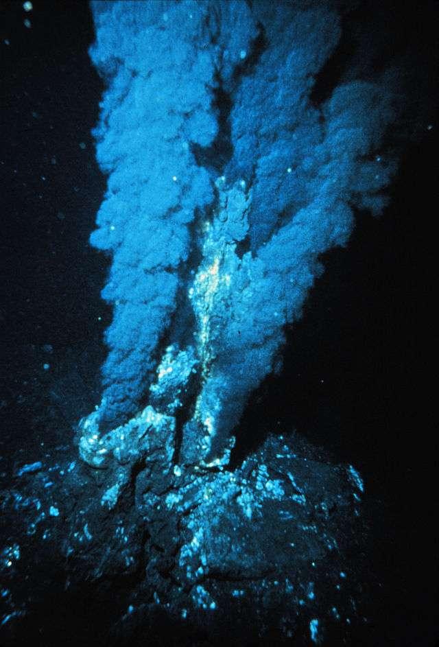 D'autres bactéries, qualifiées d'extrémophiles, vivent dans des environnements peu hospitaliers. Ici, des cheminées hydrothermales à plusieurs centaines de mètres de profondeur sous l'océan, sans lumière, sans oxygène, à très haute température et en présence de fluide acides et métalliques, sont colonisées par des bactéries thermophiles. © P. Rona, Wikimedia Commons