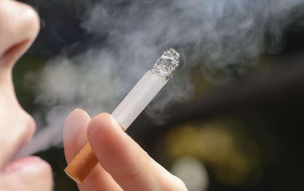 Selon l'OMS, le tabagisme serait aujourd'hui responsable d'un quart des décès dus à un cancer. Il s'agit du facteur de risque le plus important. © buenaventura13, Adobe Stock