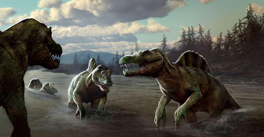 Le spinosaure est un dinosaure semi-aquatique. Les paléontologues le savent grâce à l'analyse isotopique de l'oxygène. © Marc Simonetti, CNRS
