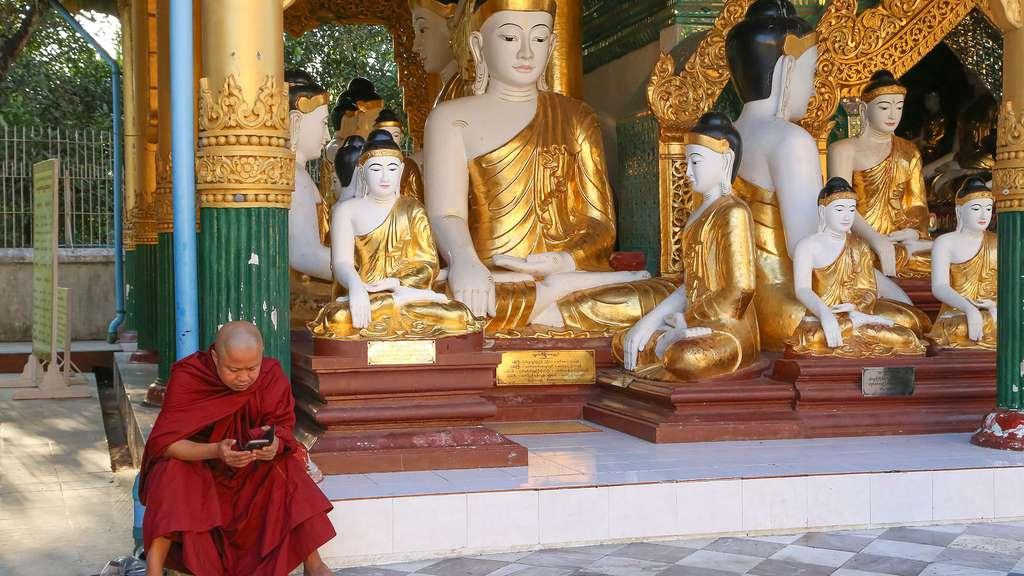 Place des bouddhas dans la culture birmane