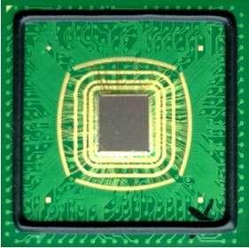 Le processeur conçu par Singular Computing s'adapte plus facilement aux informations imprécises qui sont utilisées par les logiciels de reconnaissance d'image. © Singular Computing